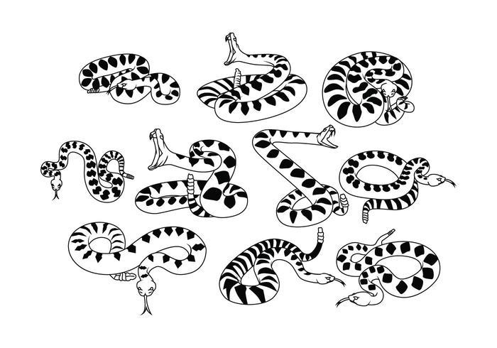 Free Rattlesnake Vektor