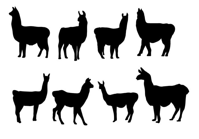Kostenlose Silhouette Lama Vektor