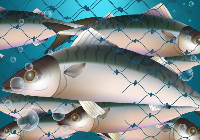 Fiskfälla i nät vektor