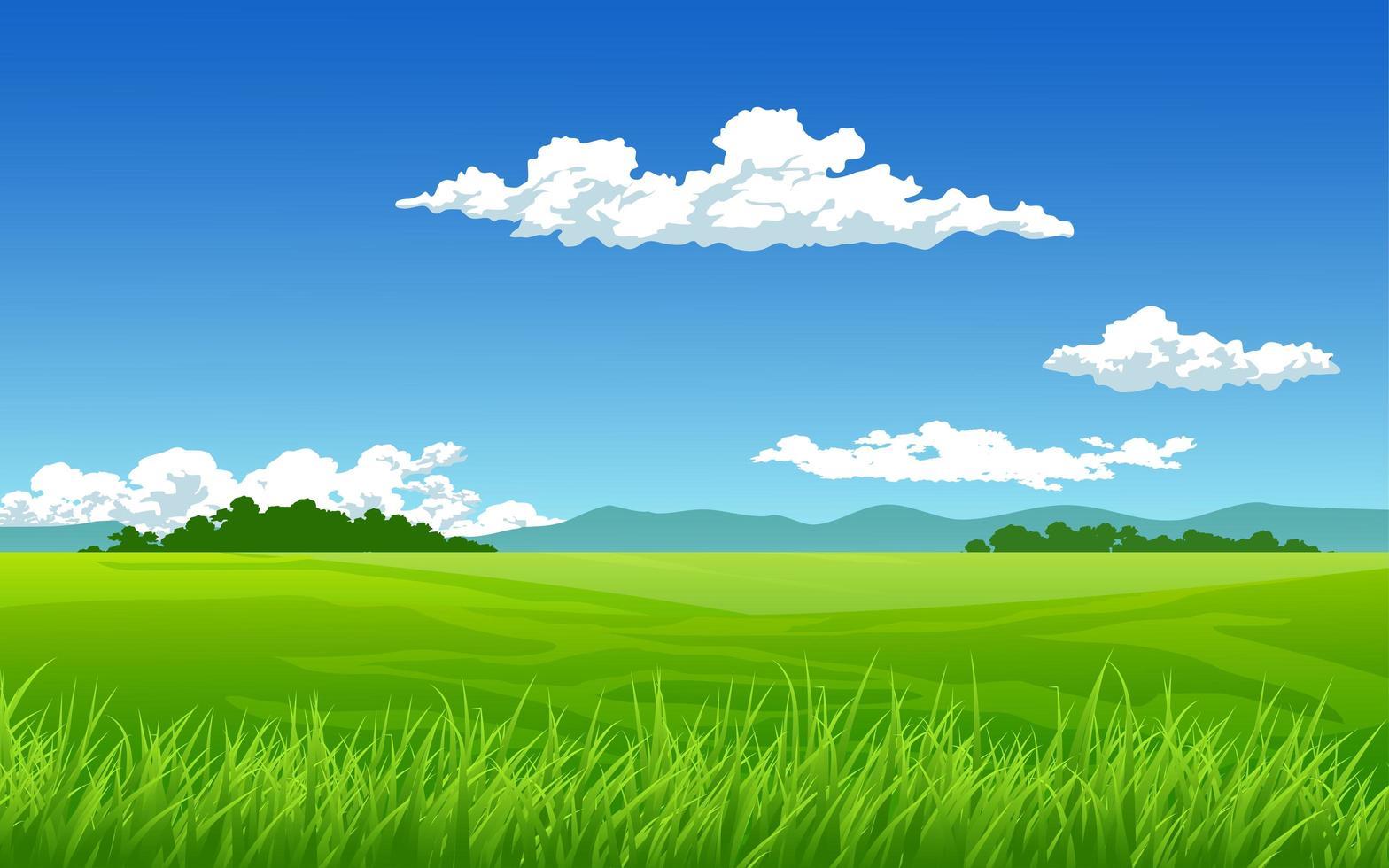 grön äng på solig dag vektor