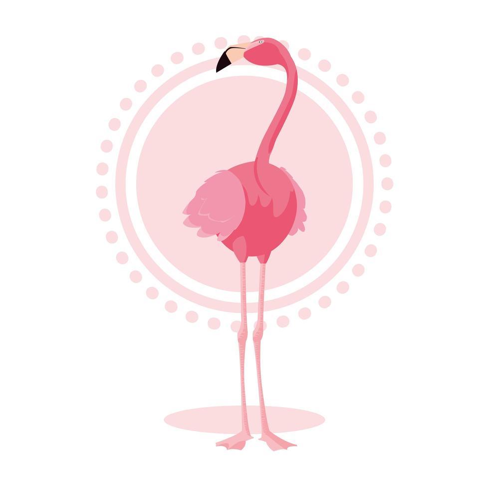 schöner Flamingovogelstand vektor