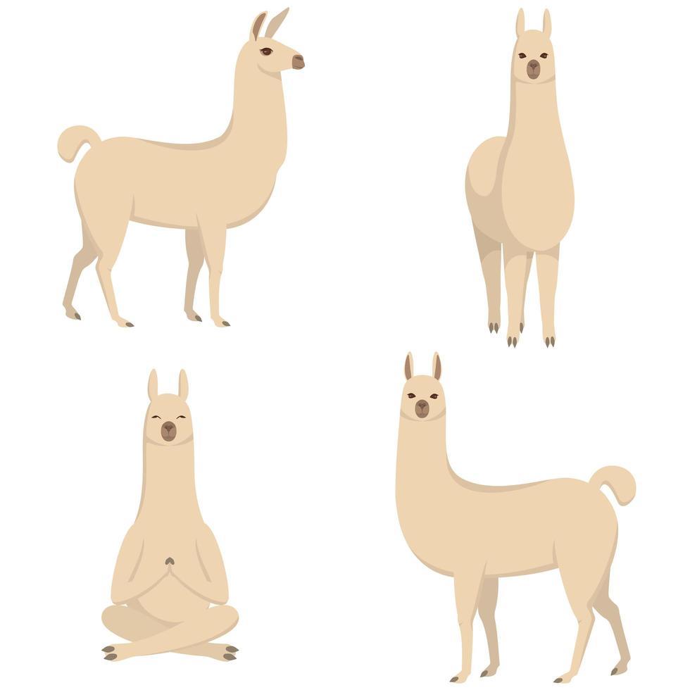 Lama in verschiedenen Posen vektor