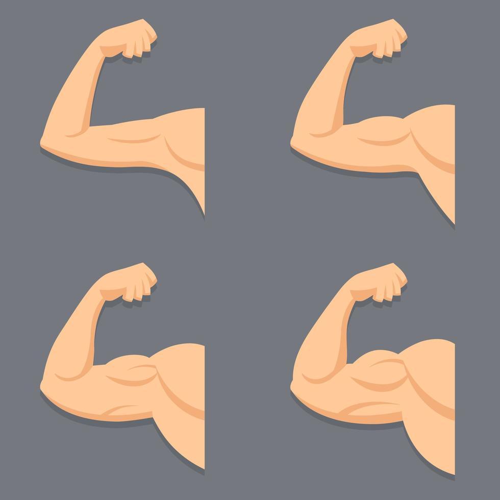 arm med kontraherade bicepsuppsättning vektor