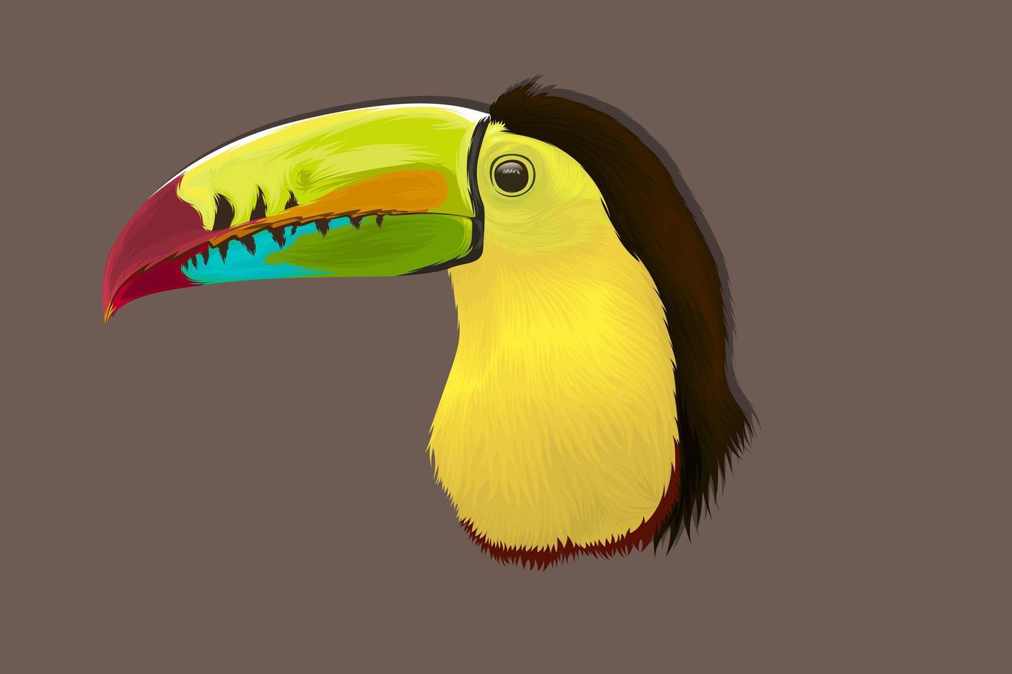 tropisk fågel realistisk handritning vektor