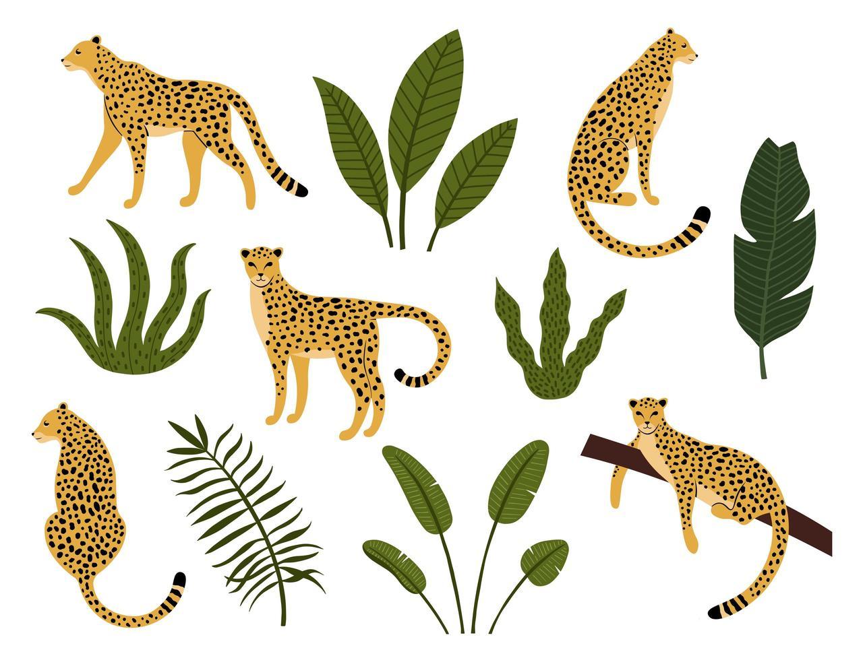 Sammlung von Leoparden, exotischen Blättern, tropischen Pflanzen vektor