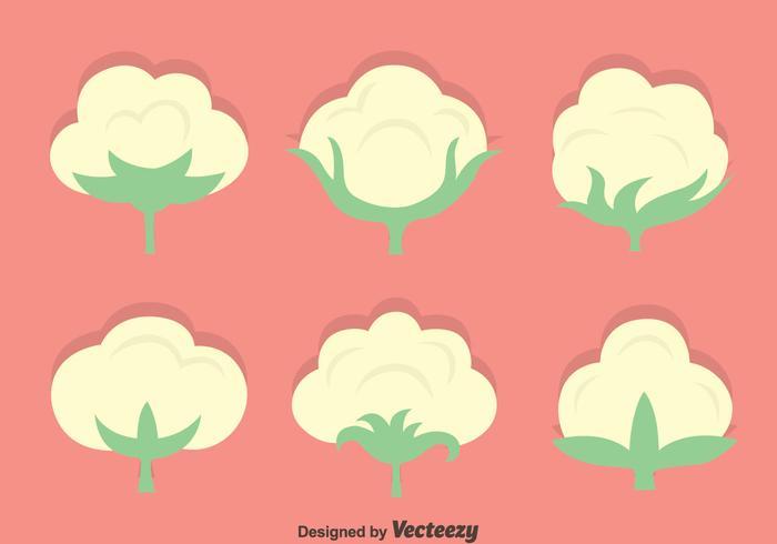 Bomull Blommor Vektor Set