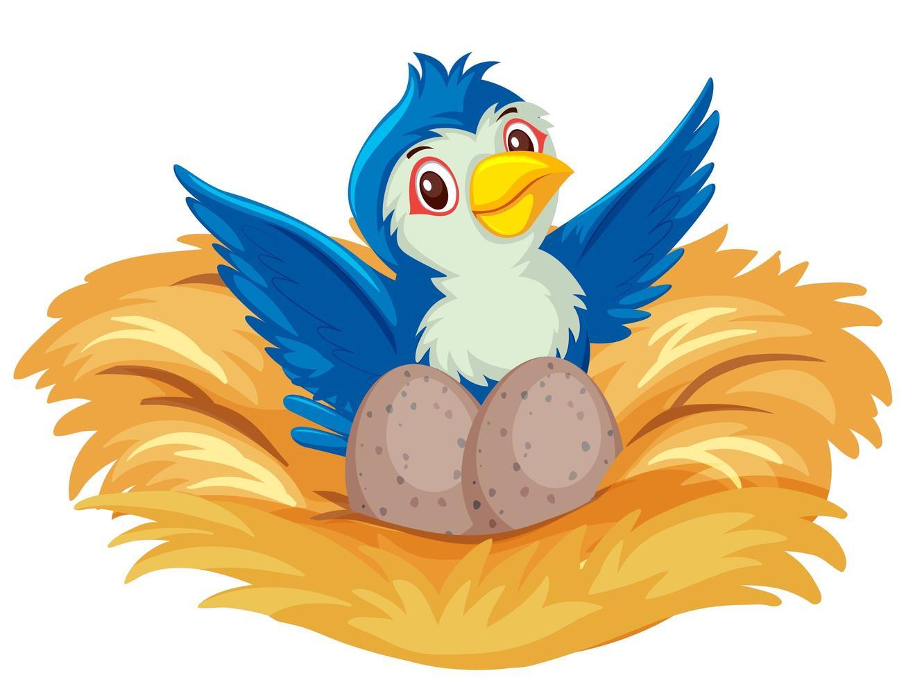 blauer Vogel auf dem Nest mit Eiern vektor