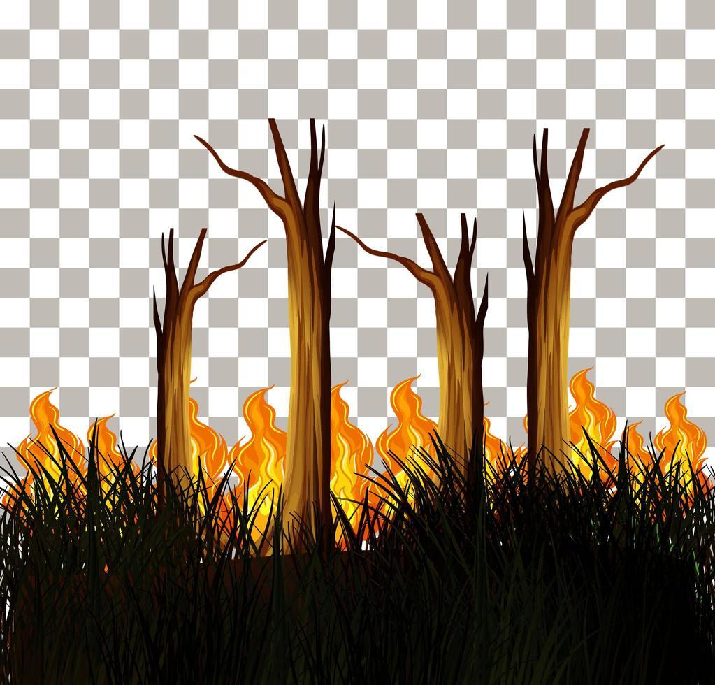 Buschfeuer isoliertes Design vektor