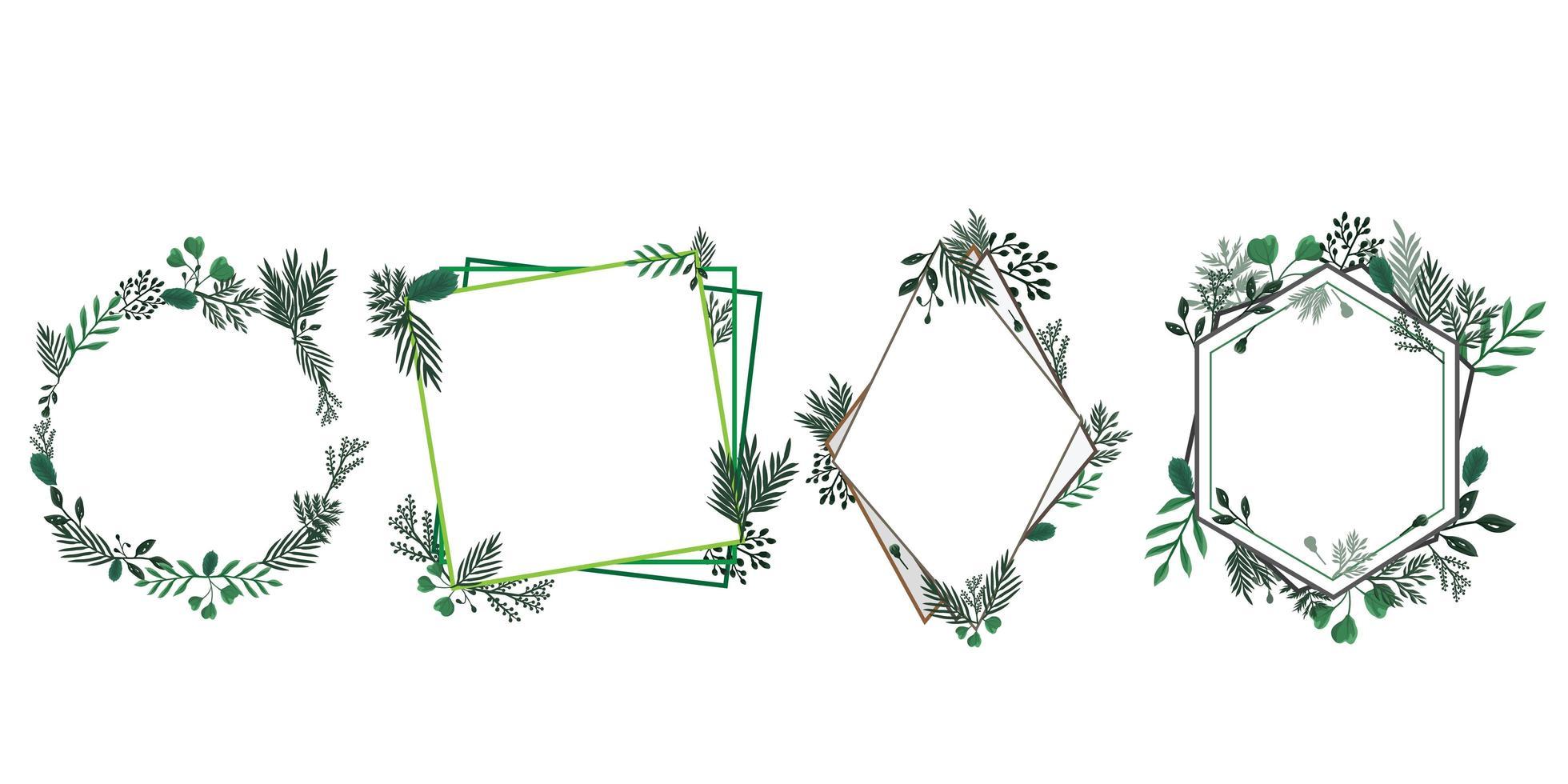 Satz Blumen- und Laubrahmen vektor