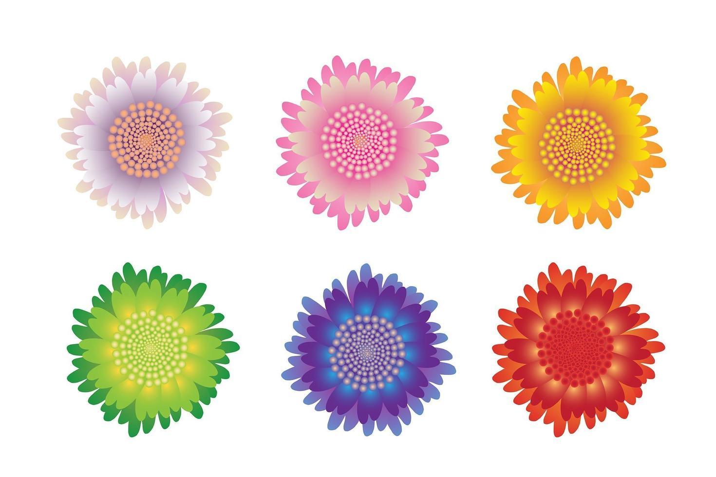 vackra blommor vektor
