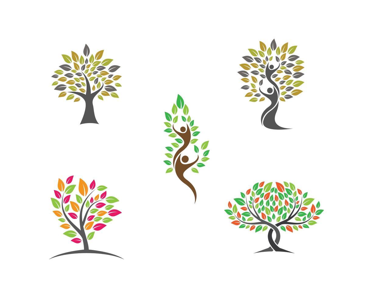 Satz von Baumlogo-Bildern vektor