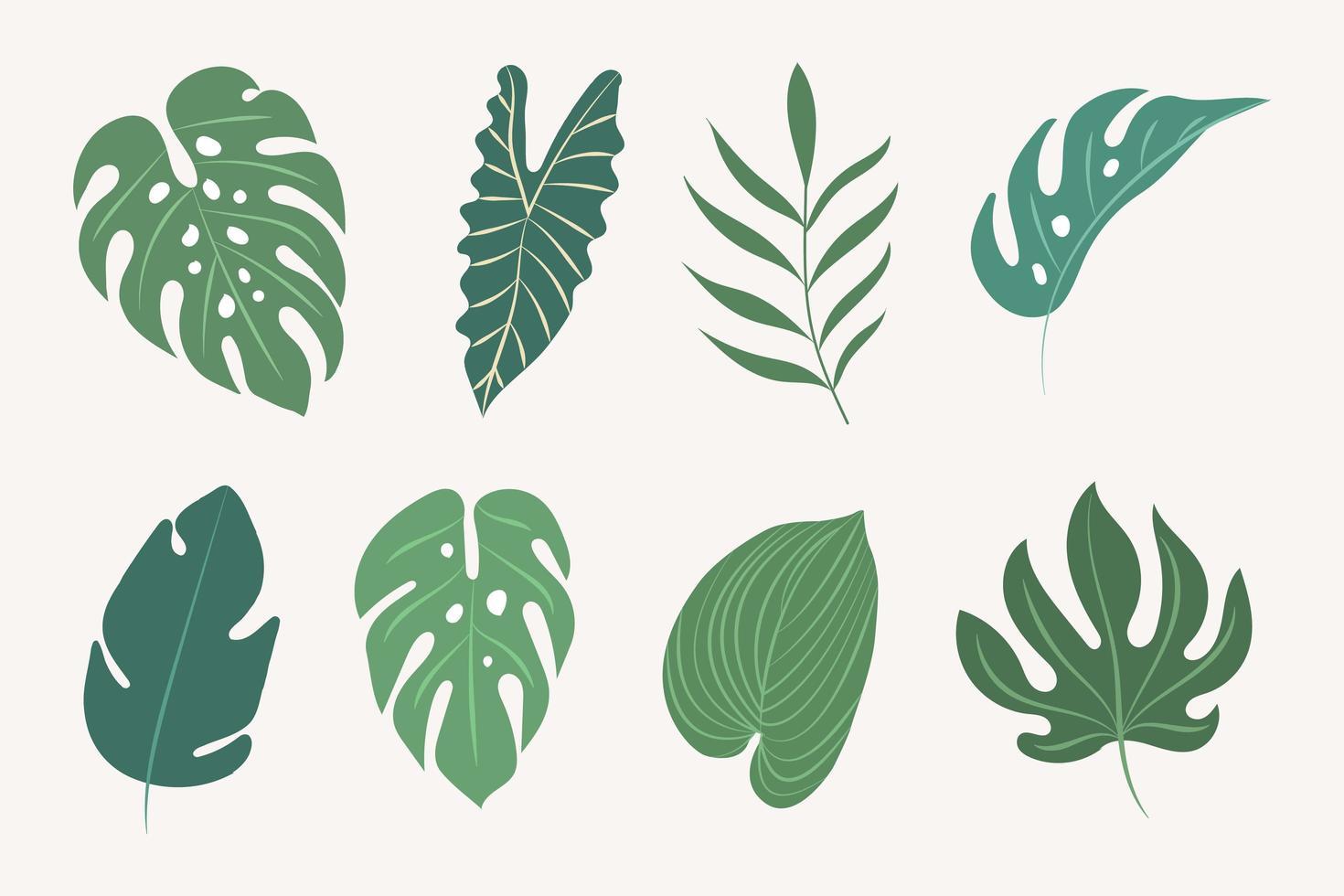 tropische Blätter gesetzt vektor