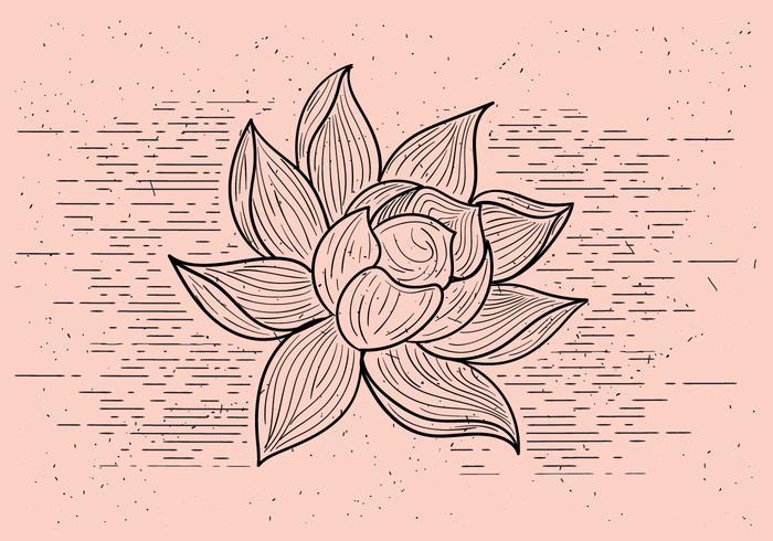 Kostenlose Detaillierte Vektor Blume
