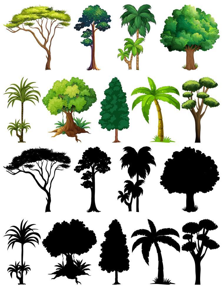 uppsättning av växter och träd med silhuetter vektor