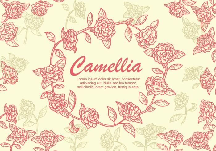 Camellia Blume Illustration vektor