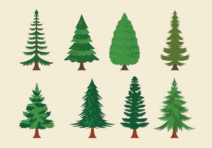 Vector Sammlung von Weihnachtsbäumen oder Sapin