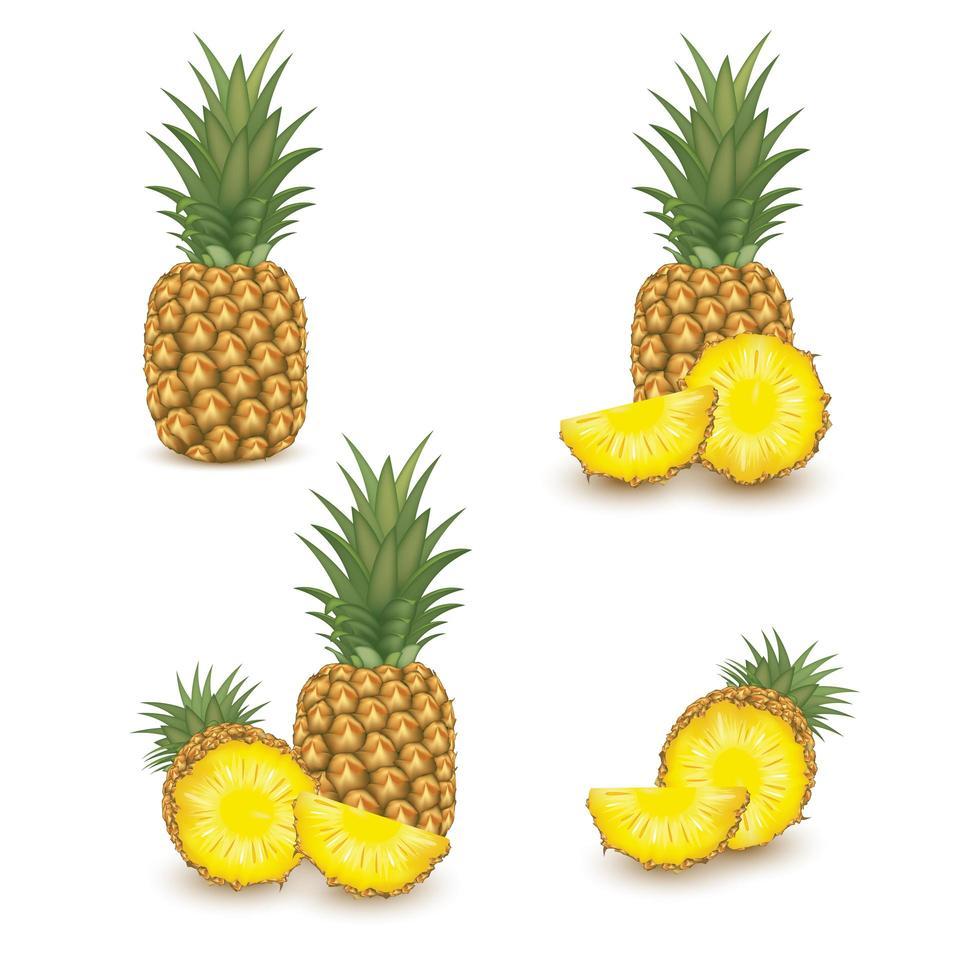 realistisk ananas frukt set vektor