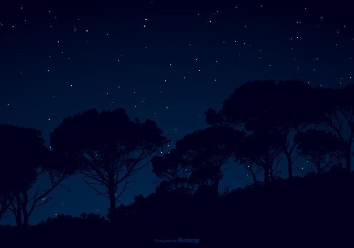 Starry Night Sky Illustration vektor