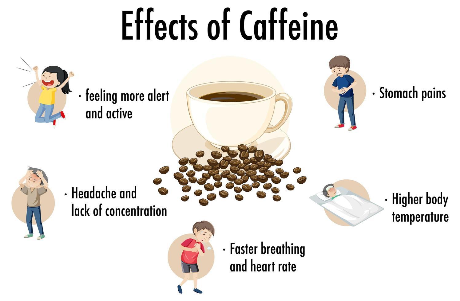 Auswirkungen von Koffein Infografik vektor