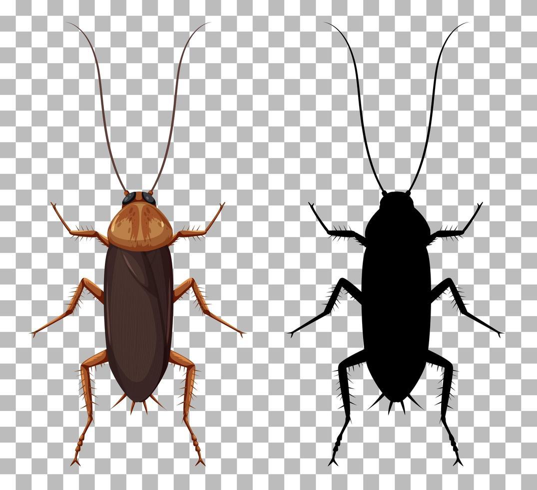 Kakerlake mit ihrer Silhouette isoliert vektor