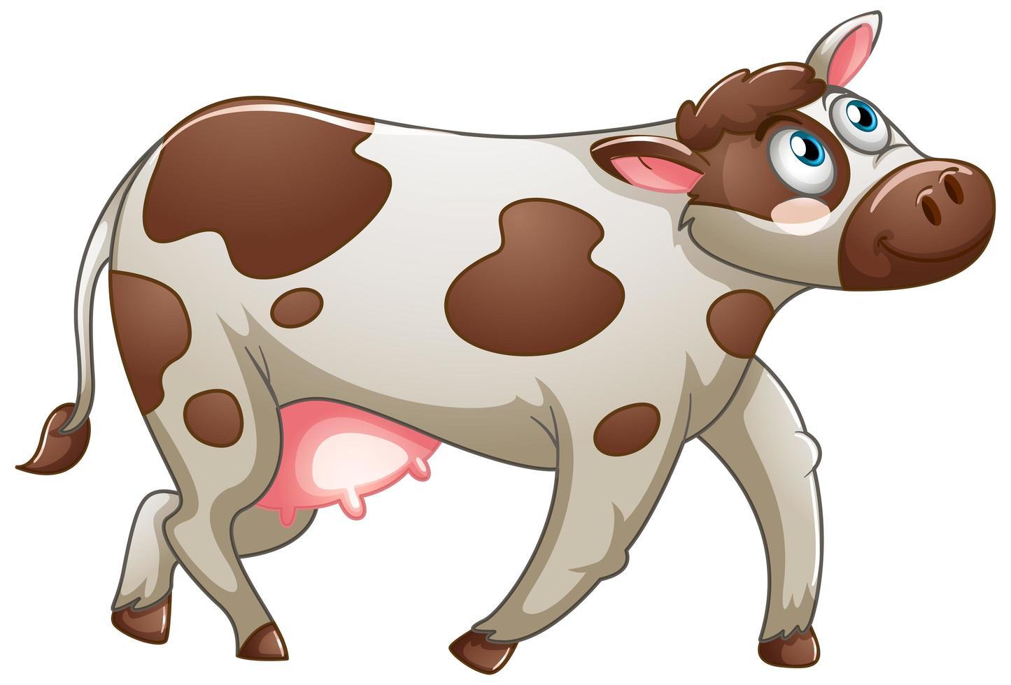 en söt ko på vit bakgrund vektor