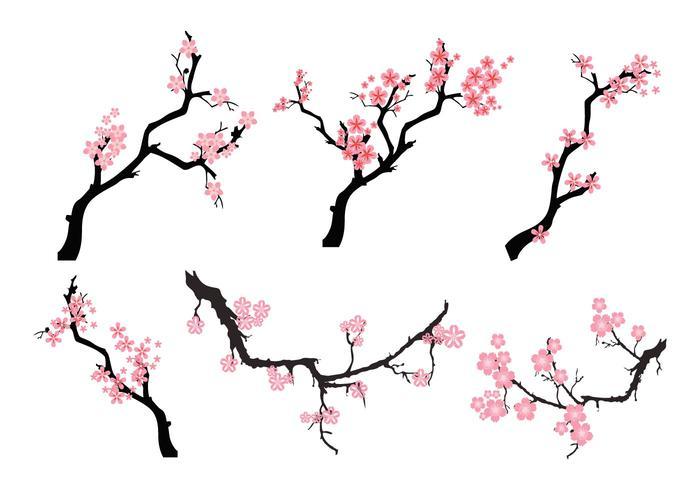 Freie Peach Blossom-Baum-Vektor vektor