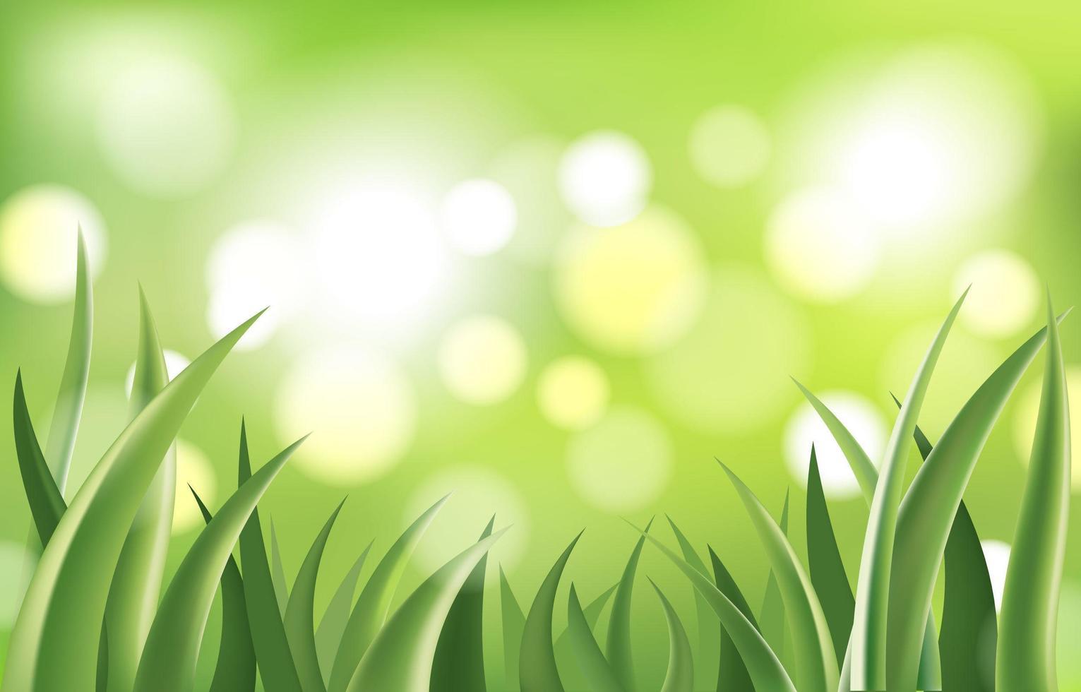 abstrakt grönt gräs i bokehbakgrund vektor