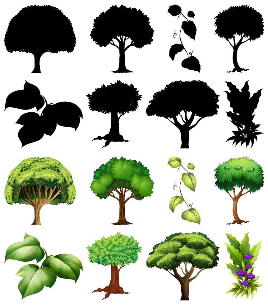uppsättning av växt och träd med silhuetter vektor
