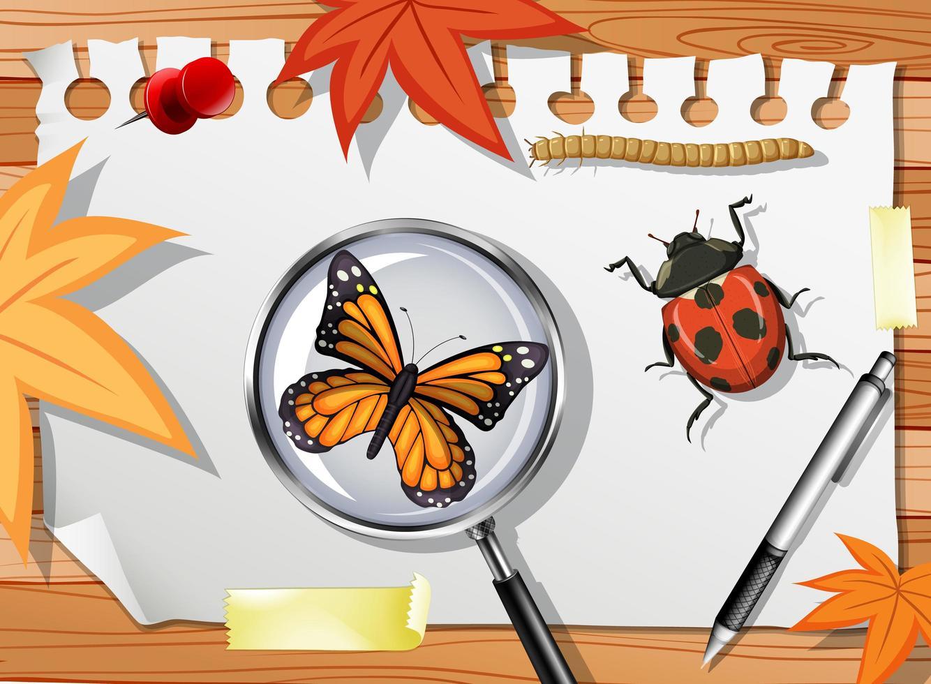många olika insekter på bordet på nära håll vektor