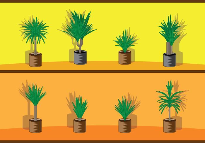 Yucca träd i blomkruka vektor