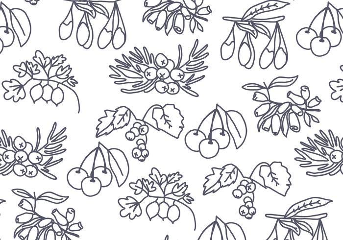 Baum-Samen und Beeren-Muster-Vektor vektor