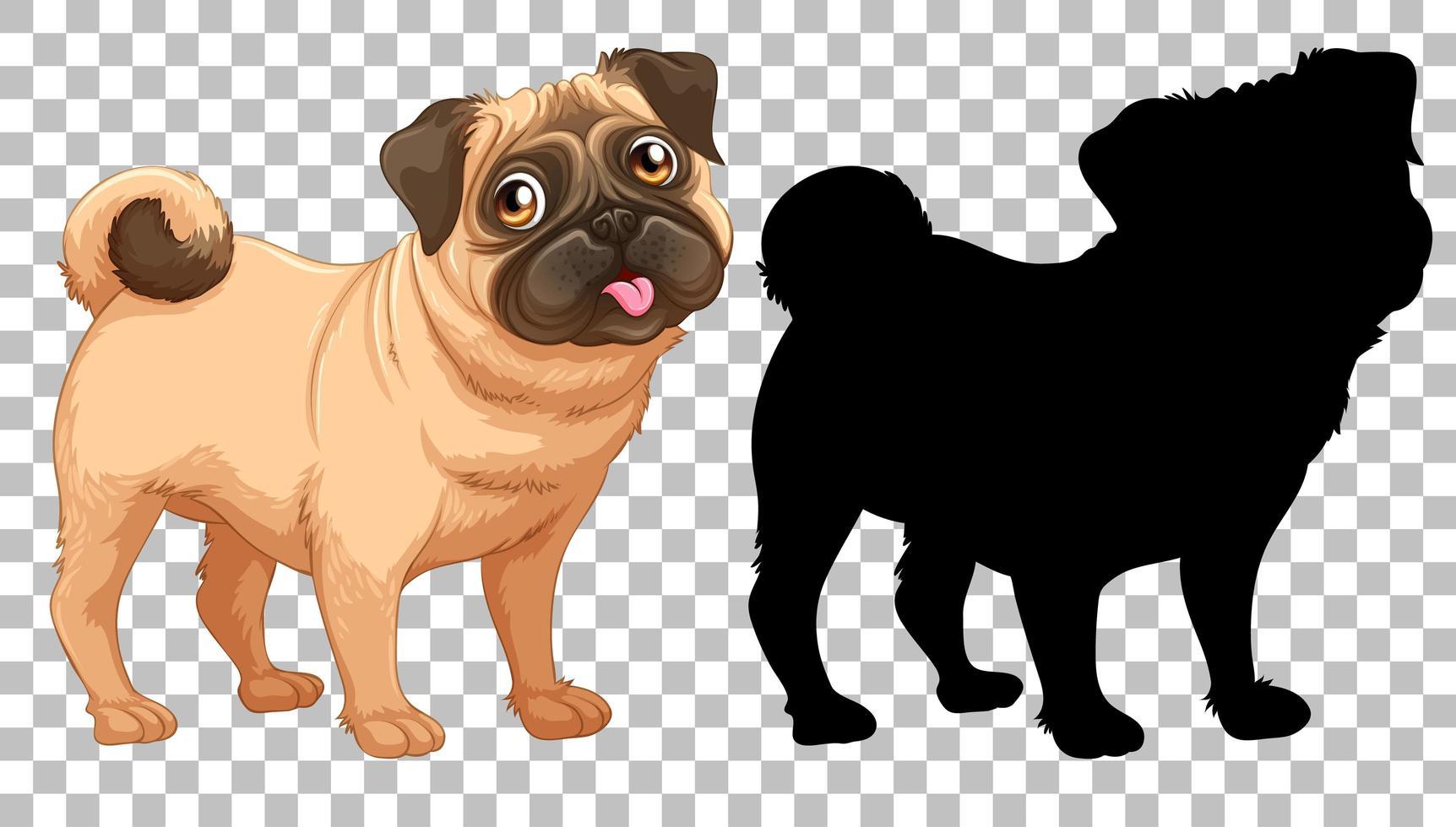 söt mopshund och dess silhuett på transparent bakgrund vektor