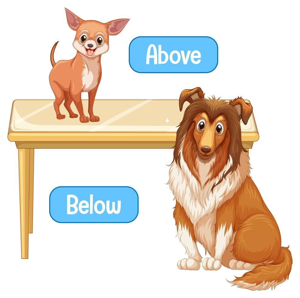 entgegengesetzte Wörter mit oben und unten vektor