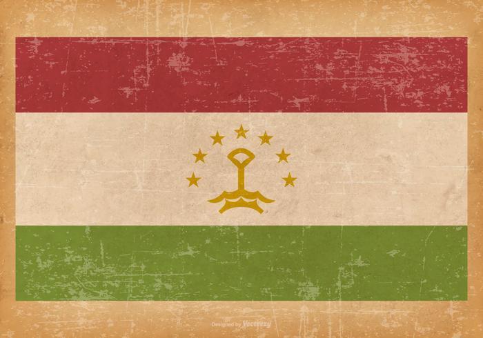 Grunge Flagga av Tadzjikistan vektor