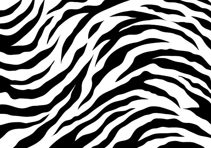 White Tiger Stripes vektor