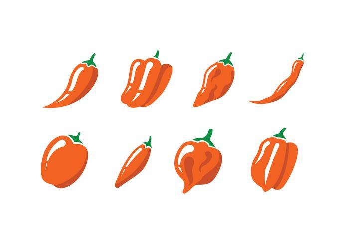 Chili peppers vektorikonen vektor