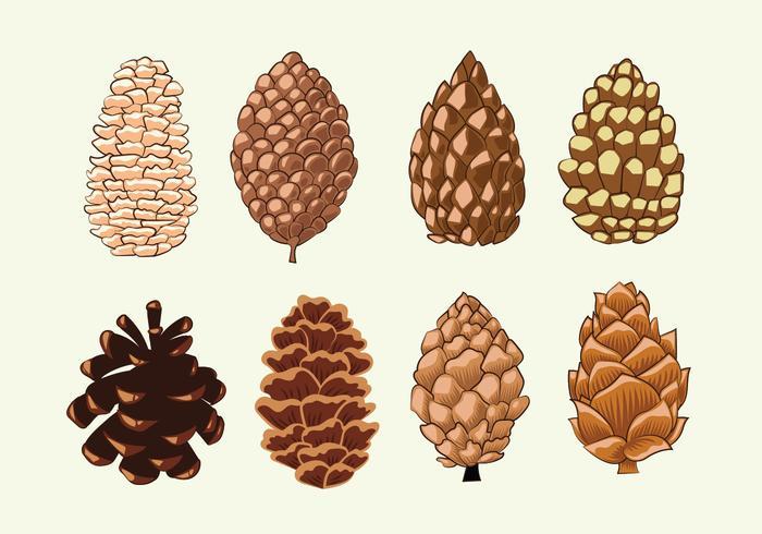 Pine Cones Set Collection vektor