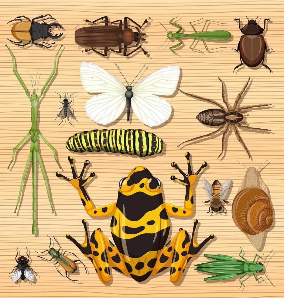uppsättning av olika insekter på trä tapet bakgrund vektor
