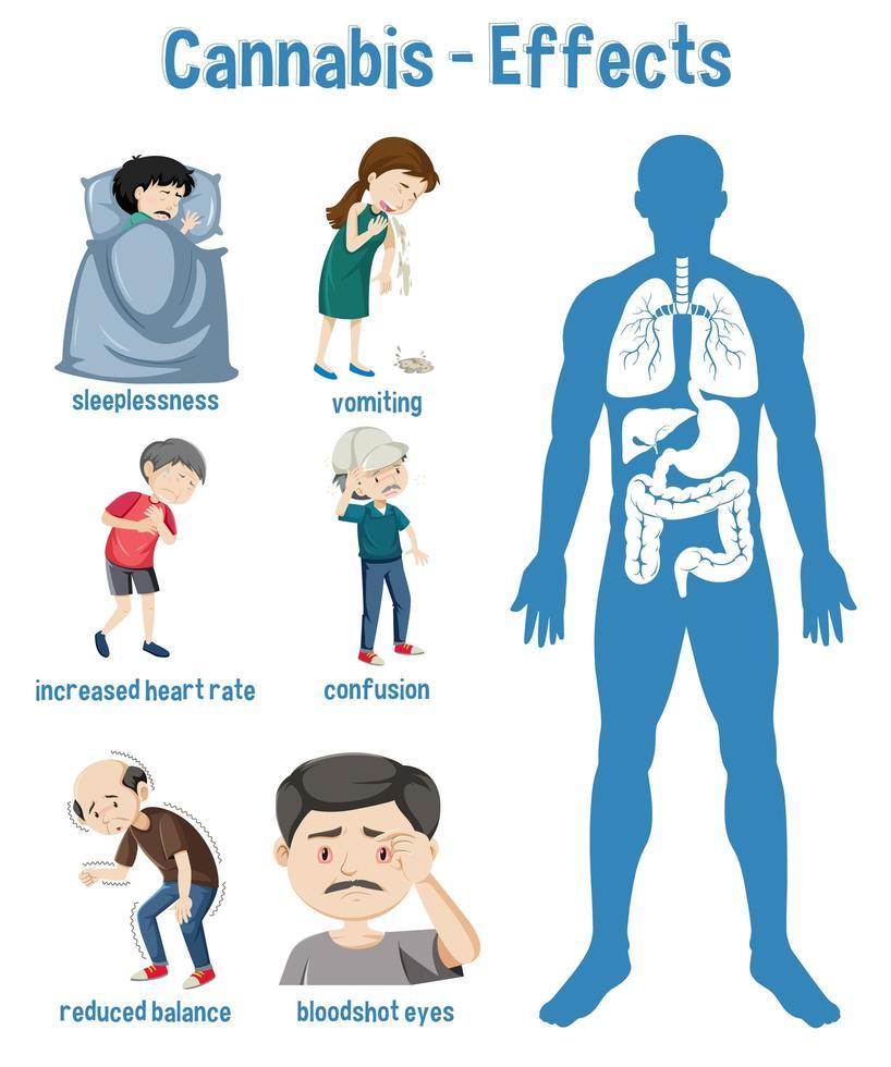hälsoeffekter av cannabisinfografik vektor