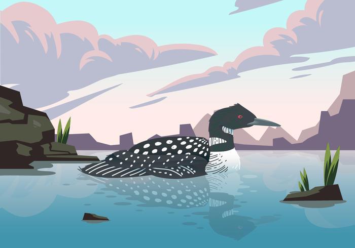 Loon Bird On Lake Vector Illustration