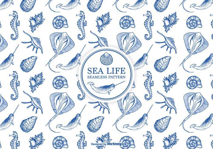 Handritad etsad havsliv sömlös mönster vektor