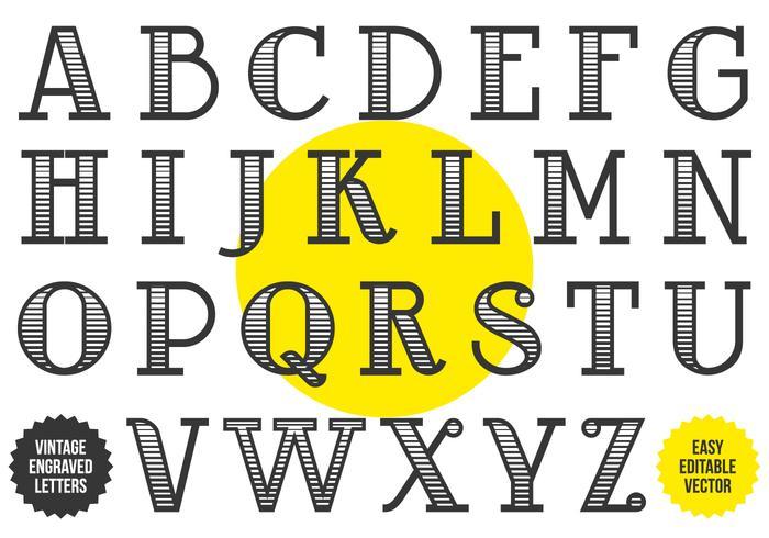Schwarz-Weiß geätztes Vintages Alphabet vektor