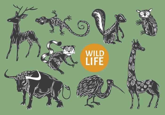Sammlung von Gravure Style Illustration Tier Wild Life vektor