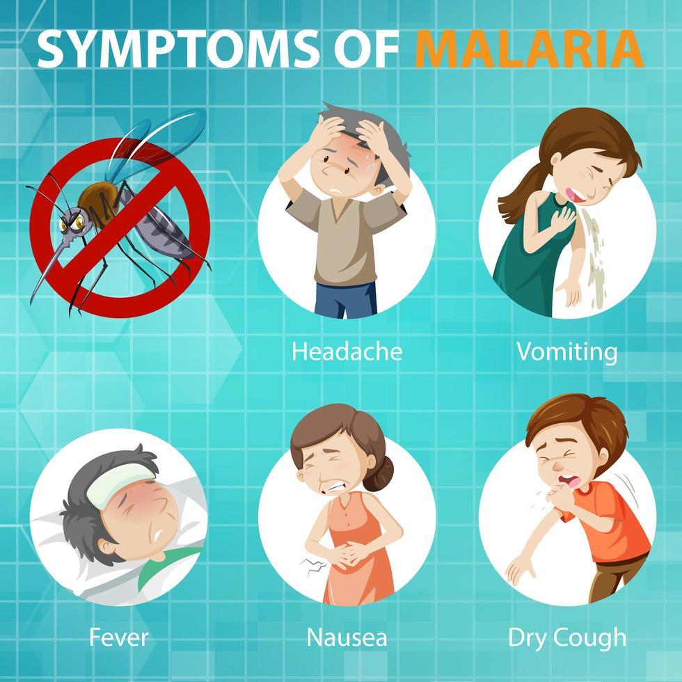 malaria symptom tecknad stil infographic vektor