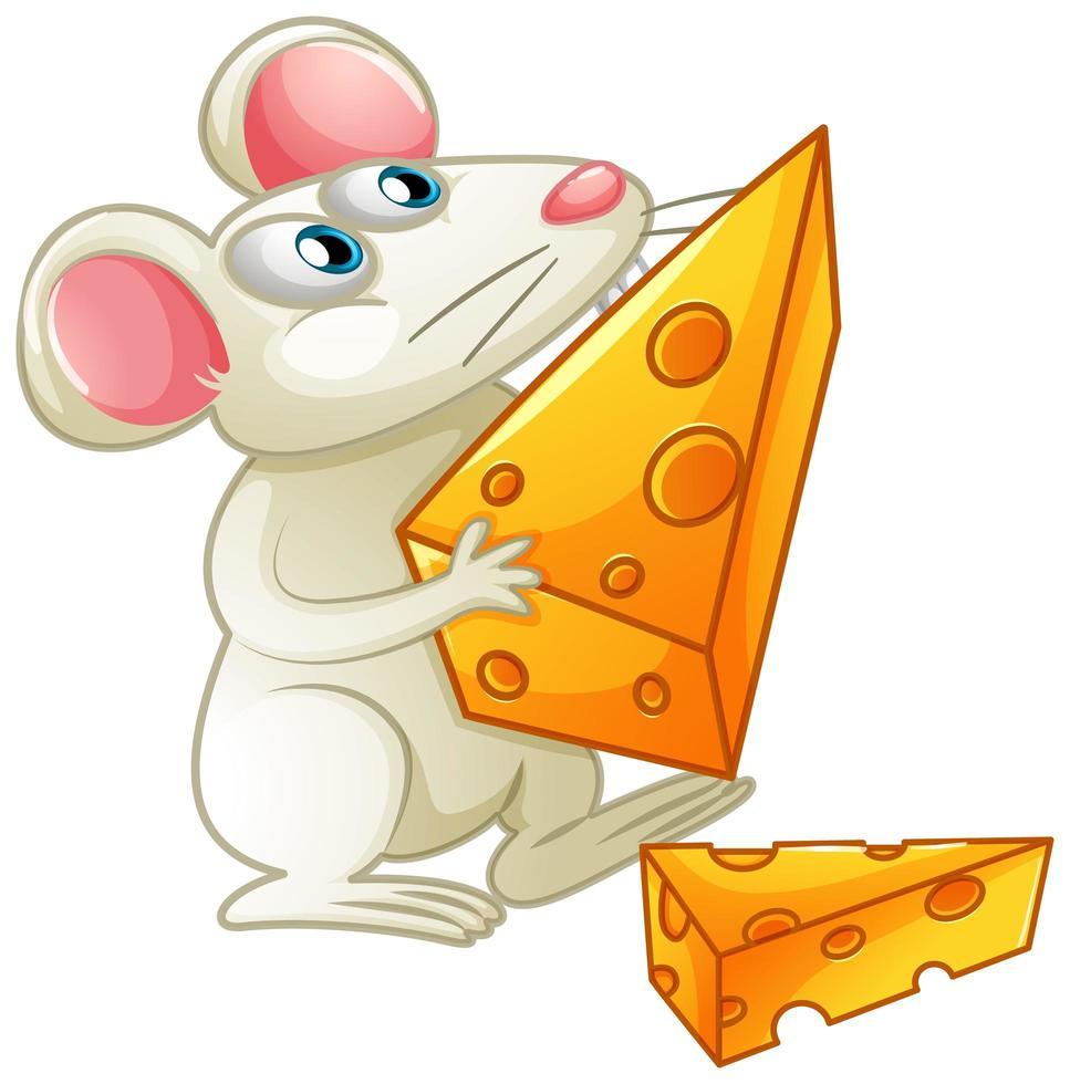 en vit mus som äter ost på vit bakgrund vektor
