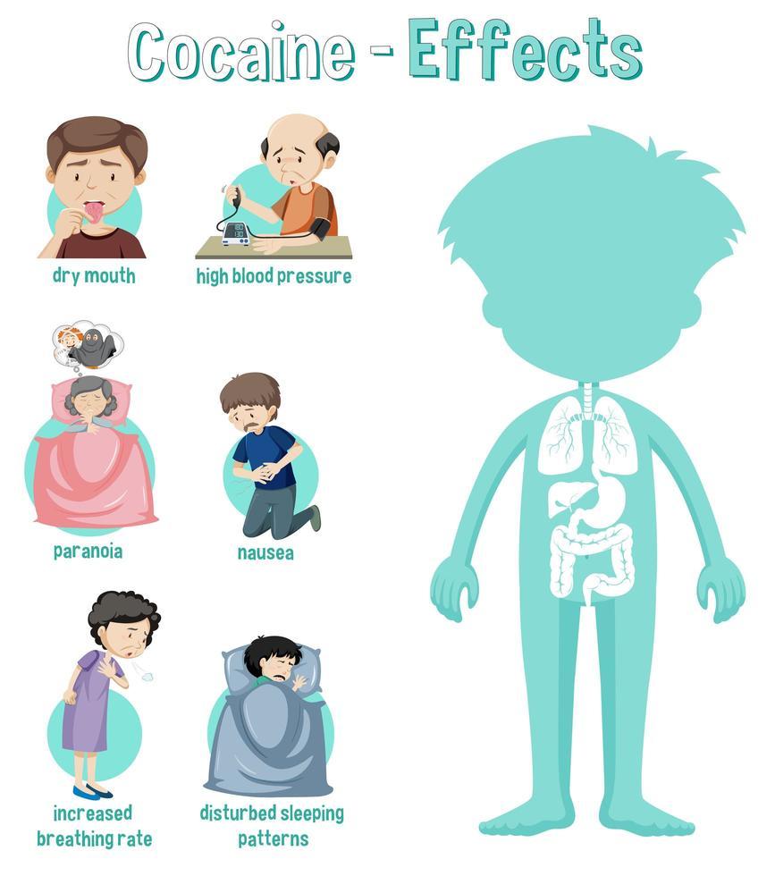 gesundheitliche Auswirkungen von Kokain Infografik vektor