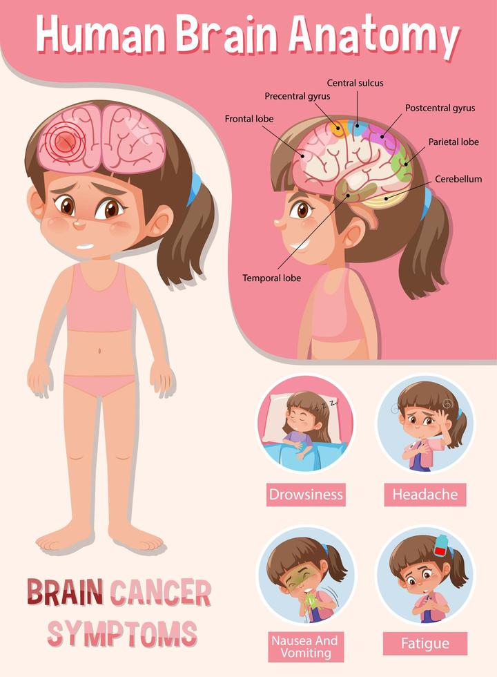 informationsaffisch av mänskligt hjärndiagram vektor