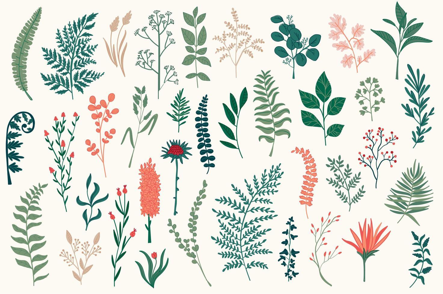 Wildblumen dekorative Elemente gesetzt vektor