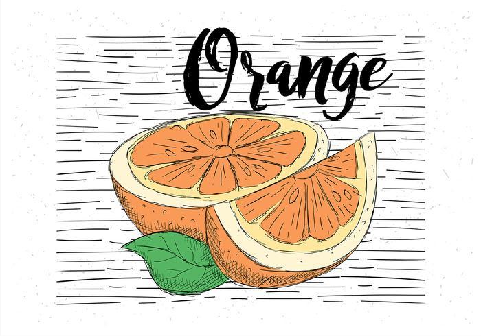 Fri handdragen vektor orange illustration