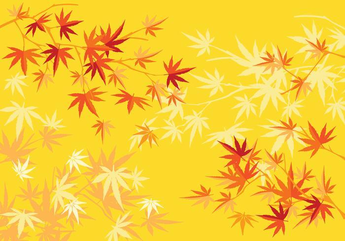 Höst eller höst Japansk lönnträd och lövbakgrund vektor